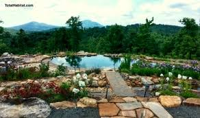 Natural Swimming Pool About Natural Swimming Pools Ponds Total Habitat