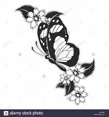 flying butterfly with flowers and leaves stock photo royalty free
