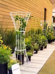 Garden Trellis Design by 80 Best Trellis Images On Pinterest Landscaping Gardens And