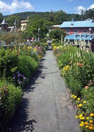 Flower Area - the bridge of flowers from ragweed to roses new england today