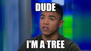 Meme Ortiz - dude i m a tree victor ortiz quickmeme