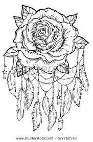 catcher flower detailed vector stock vector 577762576