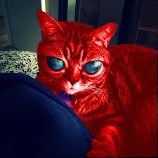 Blank Aliens Meme - raycat aliens memes imgflip