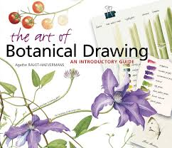 the art of botanical drawing an introductory guide agathe ravet