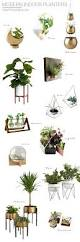 modern indoor planters sweet horizon
