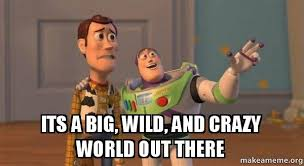 Meme Crazy - its a big wild and crazy world out there buzz and woody toy