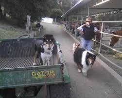 the u0027tumbleweed hotel u0027 camper city limits ranch ca 1 hipcamper