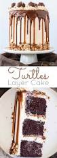 turtles layer cake liv for cake