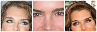6 steps to perfectly groomed and well defined eyebrows u2013 by cobi