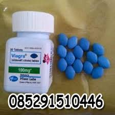 obat kuat pria viagra kuda bola api pfizer 100mg usa viagra asli