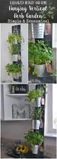 27 ways to create the best indoor herb garden