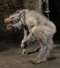 Werewolf Costume 39 Best Werewolves Images On Pinterest Werewolf Werewolves And