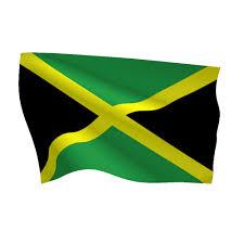 Colors Of Jamaican Flag Jamaica Flag Heavy Duty Nylon Flag Flags International