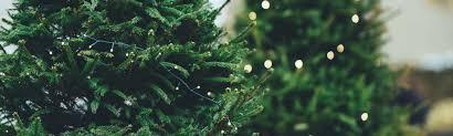 christmas party venue brisbane victoria park