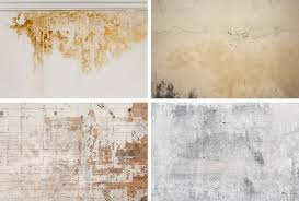 how to clean wall stains how to clean distemper painted walls