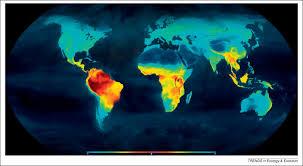 the latitudinal biodiversity gradient through deep time