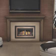 fireplace creative napoleon wood fireplace home design popular