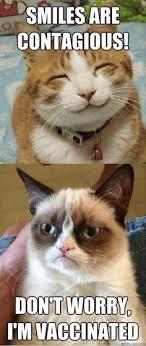 Smile Memes - relateret billede smiles pinterest grumpy cat cat and memes