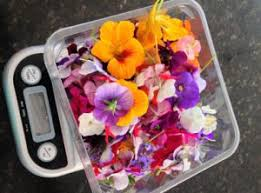 edible flowers for sale pretty produce