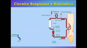 maquinas de hemodialisis youtube