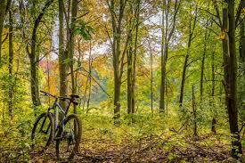 in fall fantastic fall scenic drives in michigan michigan