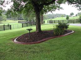 best 25 landscaping around trees ideas on pinterest landscaping