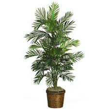 Artificial Tree For Home Decor Topiaries Artificial Trees Kirklands
