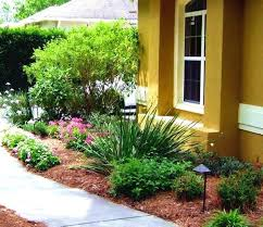Florida Backyard Landscaping Ideas by Landscaping Ideas Around Spruce Trees Garden Ideas Around Trees 70