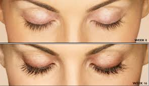 thicker longer eyelashes are yours for the growing karousing com