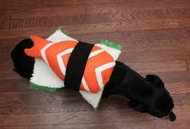 Lab Halloween Costume Ideas Eat Sleep Make Diy Sushi Costume For A Dog