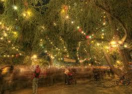 santa rosa christmas lights 90th annual lighting ceremony for altadena s christmas tree lane
