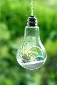 grow light bulbs lowes grow light bulbs lowes electric full spectrum led grow light bulb t5