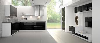 black white and kitchen ideas kitchen contemporary kitchen design ideas from bauformat