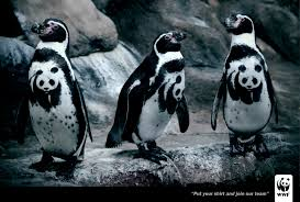 wwf print advert by creative child studios penguin ads of the