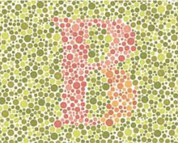 Color Blind Picture Test Total Color Blindness Test Letters Two Docs U0027 Color Vision Tests