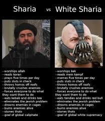White Power Meme - memes to an end thots white sharia and the misogynistic heart