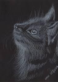 imagenes a lapiz de gatos dibujo de gato a lápiz ivan utrera