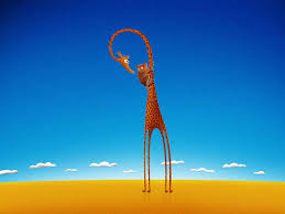 giraffe desktop backgrounds wallpaper cave