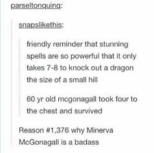 Mr Badass Meme - 21 professor mcgonagall memes only true potterheads will appreciate