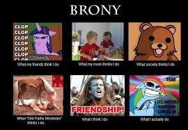 Brony Memes - brony by redcorporation on deviantart