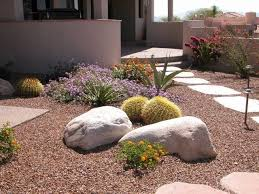 Simple Backyard Landscaping Ideas On A Budget by Best 25 Desert Landscaping Backyard Ideas Only On Pinterest Low