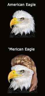 America Eagle Meme - american eagle name puns know your meme