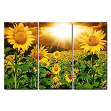 Amazon Canvas Print Wall Art Painting For Home Decor Bright