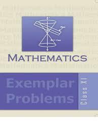 class xi mathematics exemplar problem function mathematics