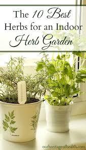10 best herbs for an indoor herb garden our heritage of health