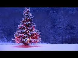 Sainsbury S Blue Christmas Decorations by Sainsbury U0027s Official Christmas Advert 2015 U2013 Mog U0027s Christmas