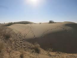 thar desert a fantastic 3 day camel trek in the thar desert rajasthan ze