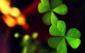 four leaf clover cute wallpaper high quality good luck iphone real