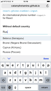 International Code Flags Github Catamphetamine React Phone Number Input React Component