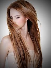 hair highlights auburn women medium haircut